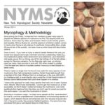 Winter 2015 NYMS Newsletter