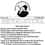 Spring 2001 NYMS Newsletter