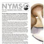Spring 2014 NYMS Newsletter