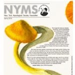 Spring 2016 NYMS Newsletter