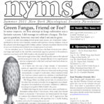 Summer 2011 NYMS Newsletter