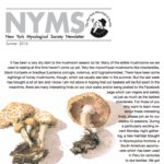 Summer 2016 NYMS Newsletter