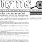 Autumn 2009 NYMS Newsletter