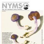 Autumn 2015 NYMS Newsletter