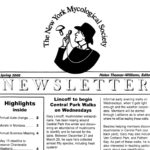 Spring 2005 NYMS Newsletter