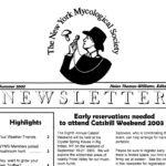 Summer 2003 NYMS Newsletter