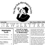 Summer 2005 NYMS Newsletter